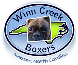 Winn Creek Boxers - Graham, North Carolina